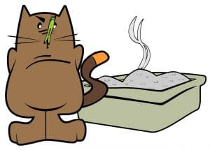 How to Stop a Cat Peeing Around the HouseCat Odor in a House How to Get Rid of Cat Odor in a House